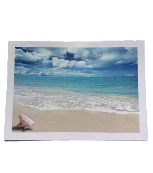 290552ef3d POSTCARDS + PHOTO PRINTS | Shoreline Distributors